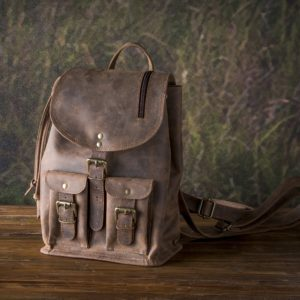 Day Trip Backpack In Buffalo Finish