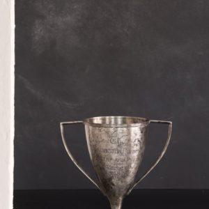 Highest Scoring Chicken Trophy