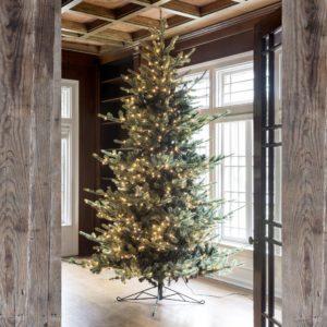 10' Blue Spruce LED