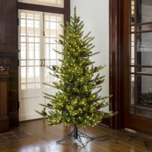 6' Green Spruce LED