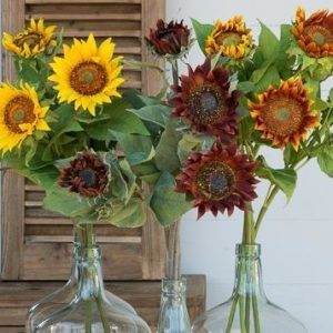 Crafted Sunflower Stem Collection (set of 12)