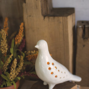 Ceramic Pigeon Night Light