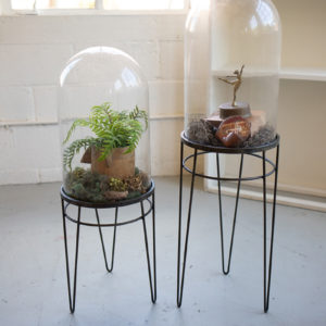 Set Of Two Glass Display Domes On Metal Bases