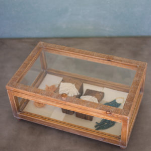 Wood And Glass Display Case - Short 19X11