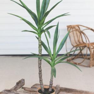 Artificial Heneken Plant With Painted Plastic Pot