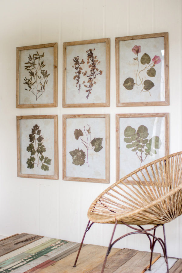 Set Of Six Leaf Prints Under Glass