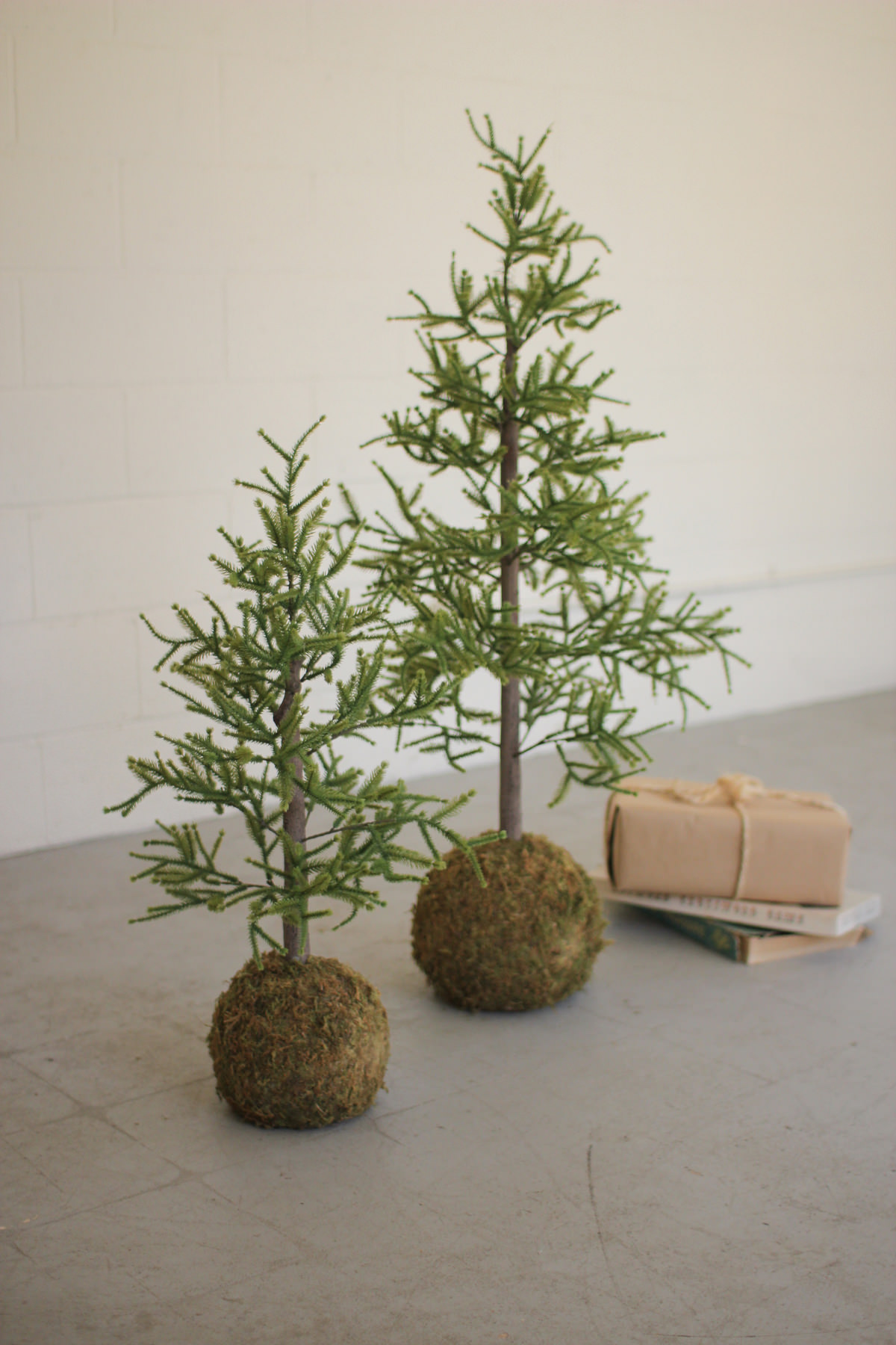 Set Of Two Artificial Pine Trees With Round  Moss Base