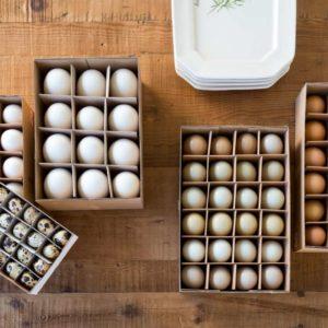 Brown Chicken Eggs Set of 24 Min 6 Sets
