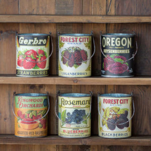 Assorted Berry Cans Set of 6