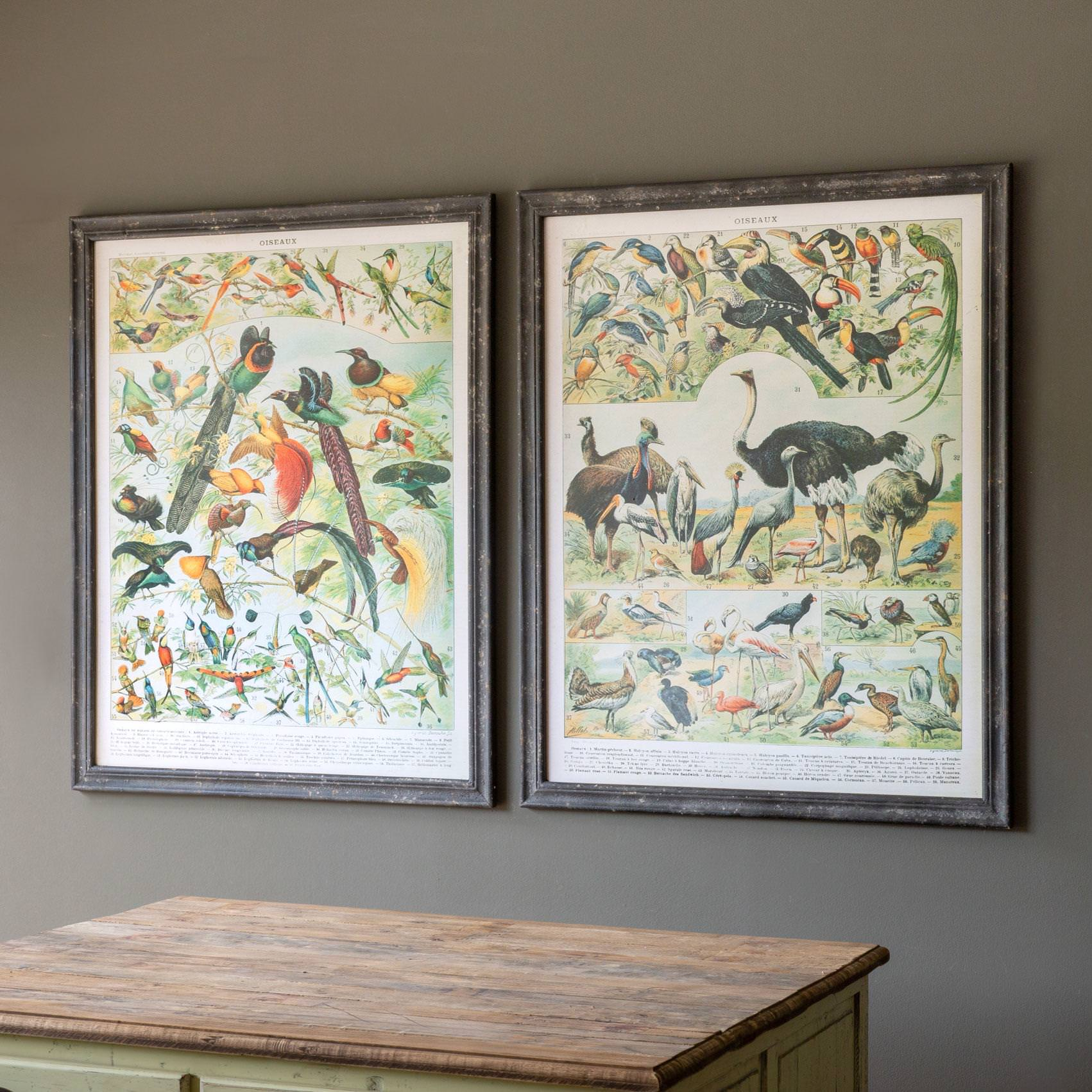 Vintage Birds Prints Min 2