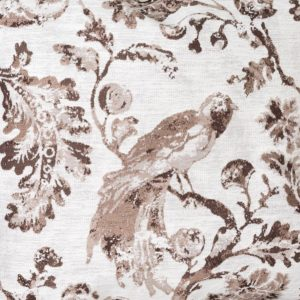Brown Bird Toile Fabric