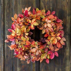 Autumn Virginia Creeper Wreath Min 2