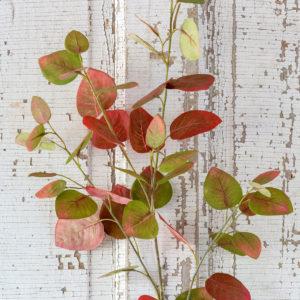 Red Bud Leaf Spray Min 12