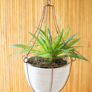 Hanging White Clay Pot With Copper Wire Trellis Top