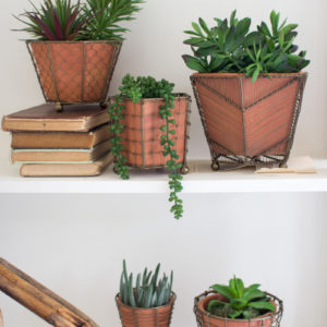 Set Of 5 Terracotta Planters With Wire Wrap And Brass Detail