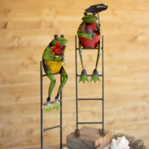 Set Of Two Recycled Metal Frogs On Ladders