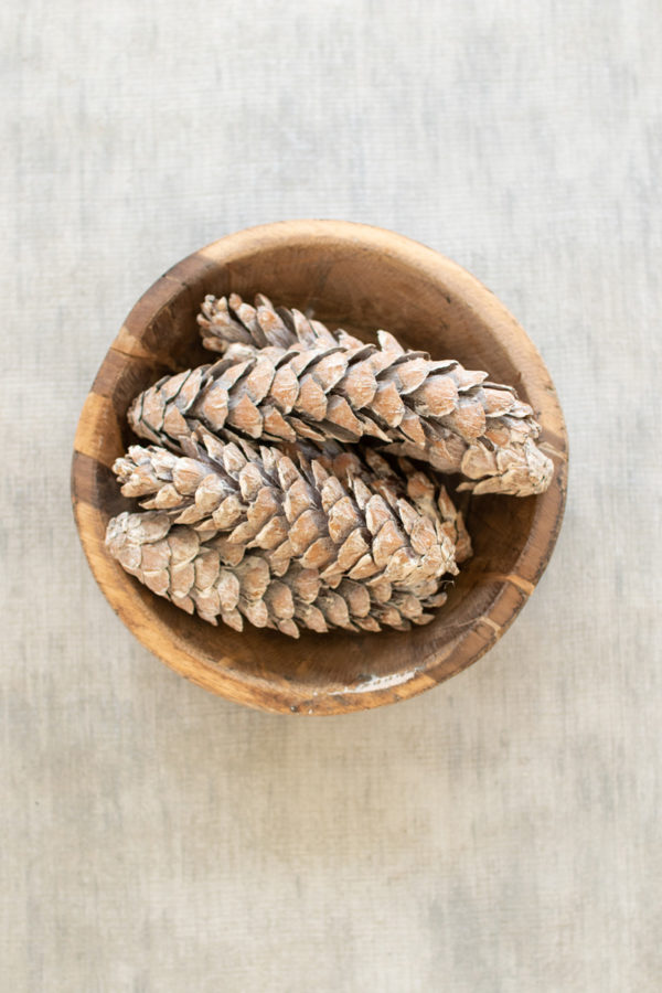 Bag Of 6 Strobus Pine Cones - Frosted White - (Includes 12 Bags)