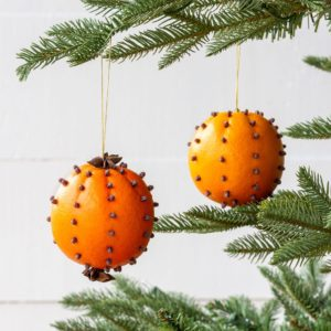 Cloved Orange Ornaments Min 6