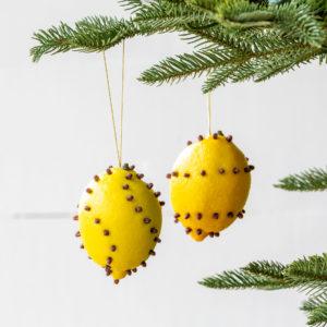 Cloved Lemon Ornaments Min 6