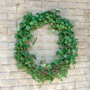 Ivy Wreath