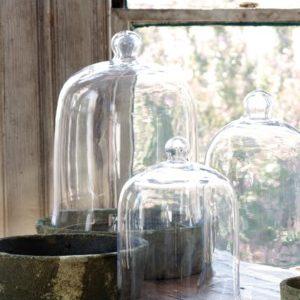 Extra Lg Bell Jar 16'' X 12''