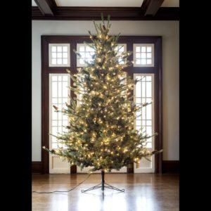 9' Blue Spruce LED