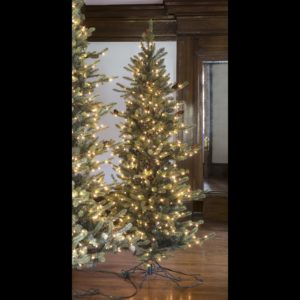 7.5' Slim Blue Spruce LED